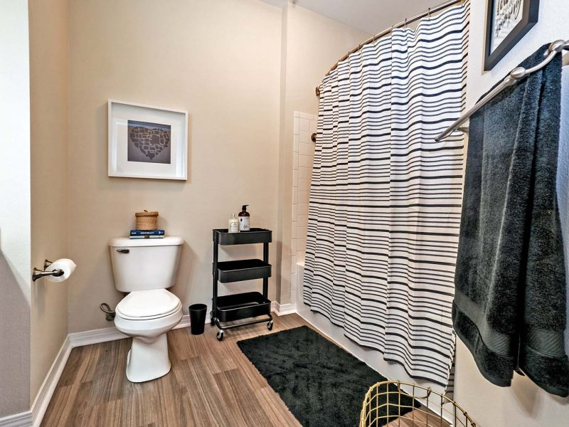 This image shows the premium apartment feature, with a renovated bathroom with trendy plank flooring and more.