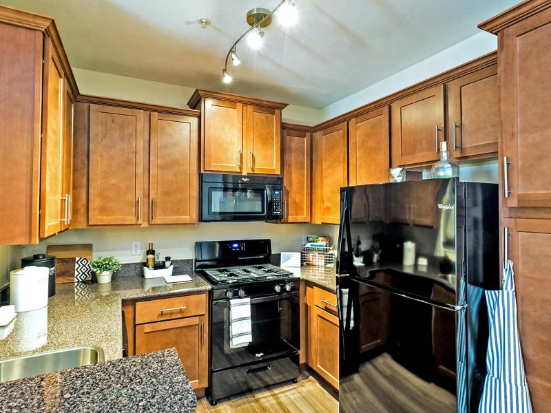 This image shows the premium apartment features, specifically the kitchen area that has a high-quality gourmet kitchen with all black appliances.